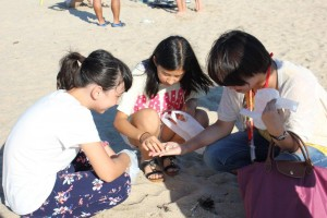 舞子の海浜で貝拾い